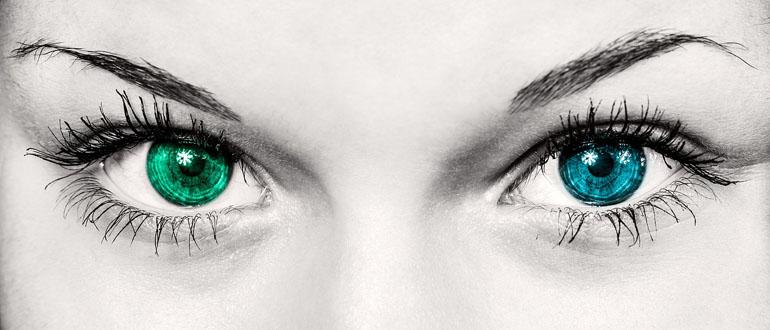 Как быстро восстановить зрение самостоятельно